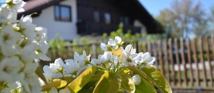 Erlebnis Haus Spiess - Maltschacher See - Aktuelles